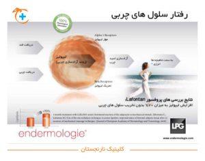 رفتار سلول های چربی در LPG